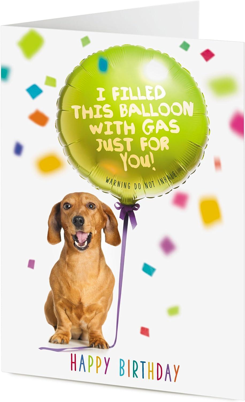 Dog humorous Card Handmade Happy Birthday Sausage dachshund