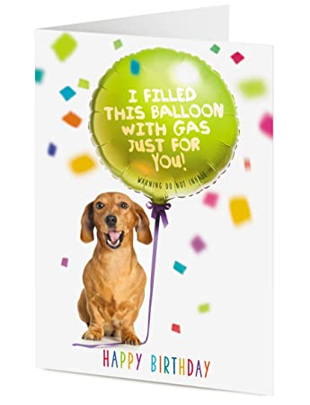 Funny Dachshund Sausage Dog Holding A Balloon I Filled This Balloon