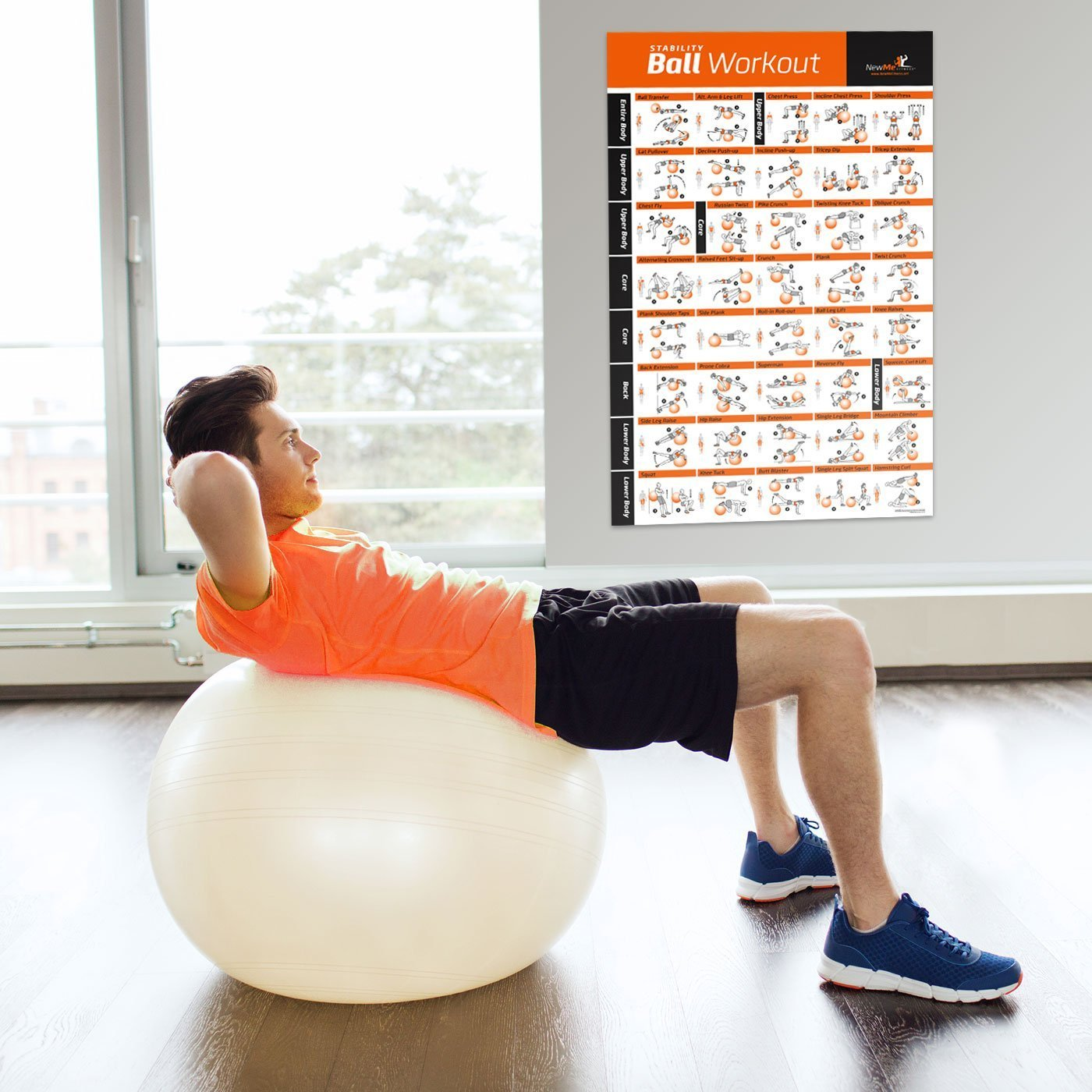 Bola del ejercicio Poster - entrenamiento de cuerpo entero - Swiss, Yoga, equilibrio y estabilidad pelota gimnasio en casa cartel - programa para tu ...