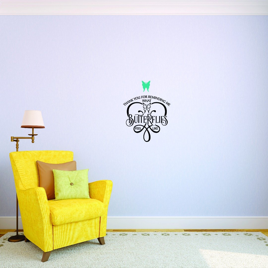 Design with Vinyl JER 1746 2 Hot New Decals Thank You for Reminding Me What Butterflies Feel Like. Wall Art Size 14 Inches x 28 Inches Color Multi 14 x 28