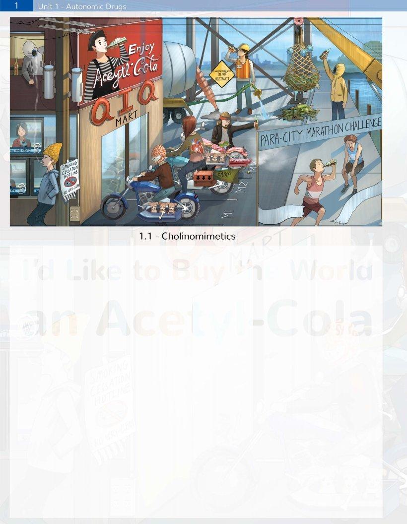 Amazon com: SketchyMedical Official SketchyPharm Workbook