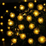 Qedertek Pom-Pom Solar Christmas Lights, 15.7ft 20 LED Christmas Lights Outdoor, Waterproof Solar String Lights for Home, Lawn, Garden, Wedding, Patio, Party, Xmas and Holiday Decorations (Warm White)