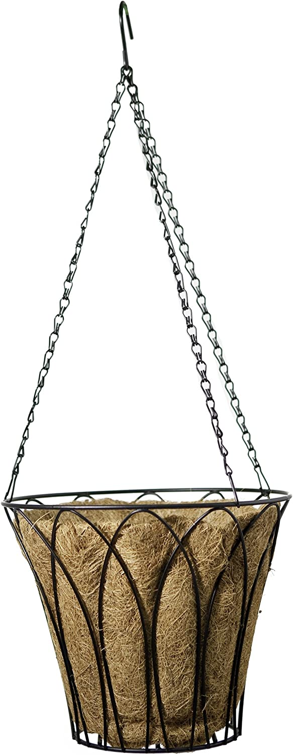 Panacea Products 12-Inch Classic Moss Basket