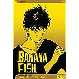 Banana Fish, Vol. 17 (17)