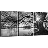"Sea Charm - Canvas Prints Wall Art,Black and White Tree in Sunrise Canvas Wall Art, Lake Landscape Picture Giclee Print on Canvas,Framed and Ready to Hang,Modern Home Ofiice Wall Decor - 48""x24""overal"