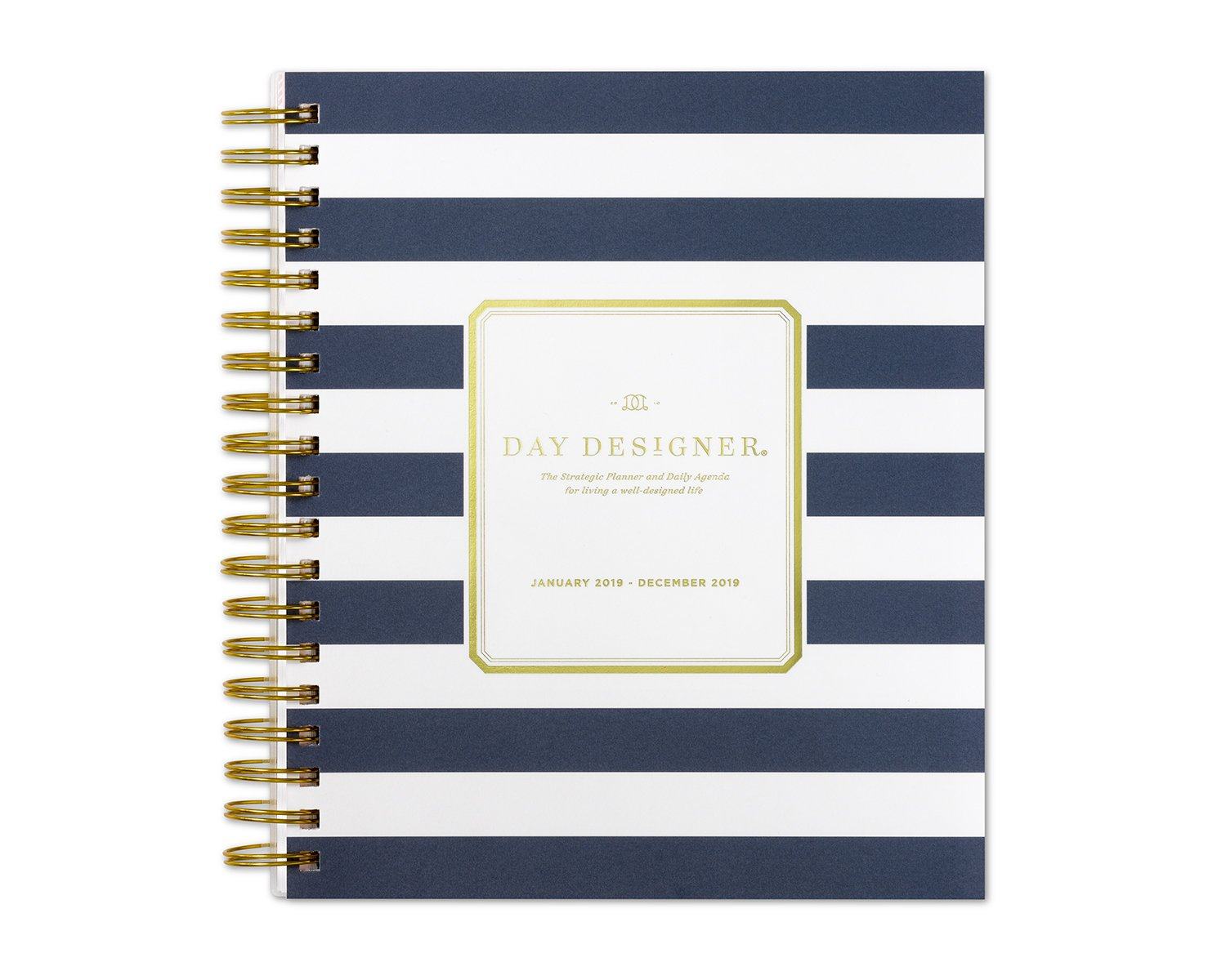 image regarding The Day Designer known as Working day Designer for Blue Sky 2019 Every day Regular Planner, Versatile Frosted Address, Dual-Twine Binding, 8\
