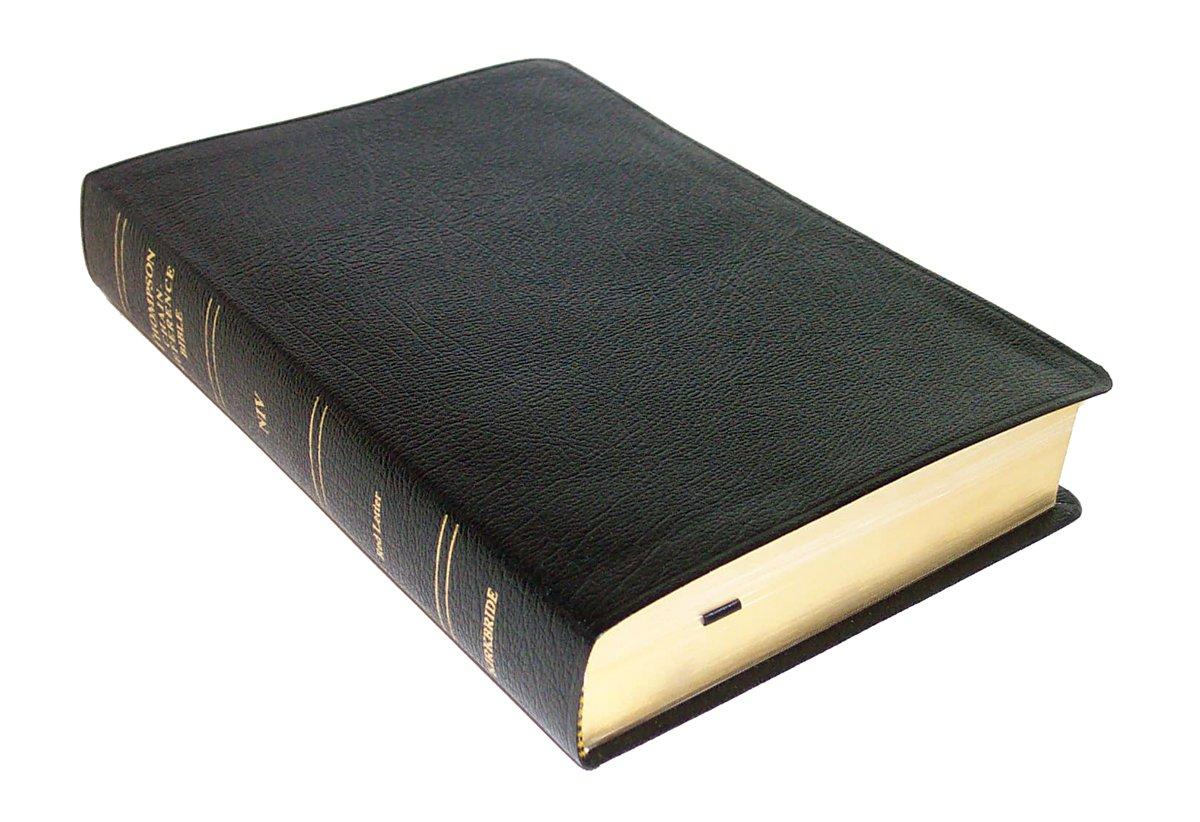 Thompson Chain Reference Bible-NIV ( indexed) pdf epub