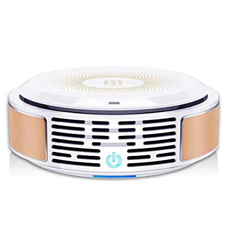 Review Air Purifier with True