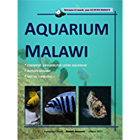 Aquarium Malawi - Comment facilement débuter un biotope Malawi - Mbunas