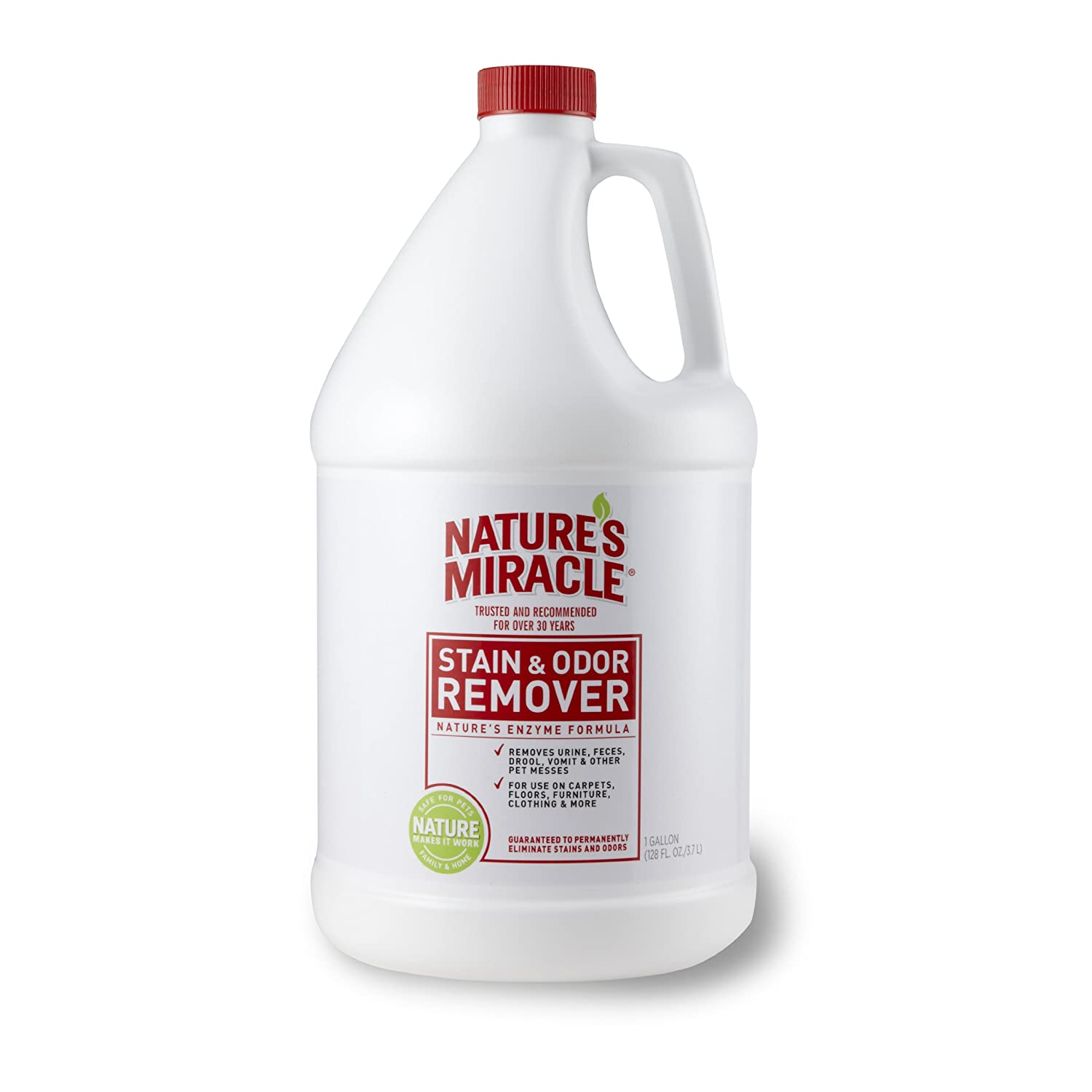 Lists Of The Best Enzyme Cleaner For Cat Urine Play With