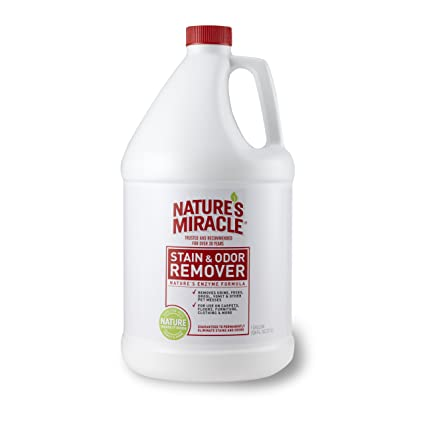 Nature's Miracle Stain & Odor Remover Pet stain removal spray
