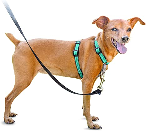PetSafe 3 in 1 Harness - No-Pull Dog Harness