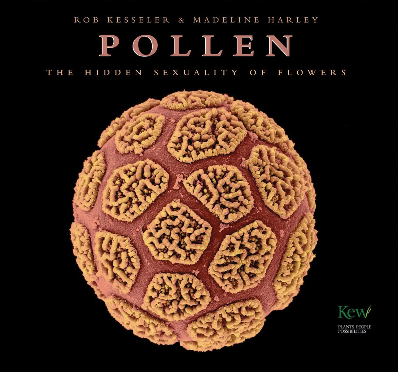 Read Online Pollen: The Hidden Sexuality of Flowers pdf
