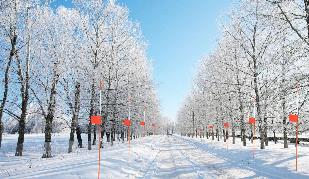 FiberMarker Snow Markers Driveway Reflectors Snow Stakes Flags Red 4-Inchx3-Inch with 36-Inchx5//16-Inch Orange Solid Snow Poles 50pack