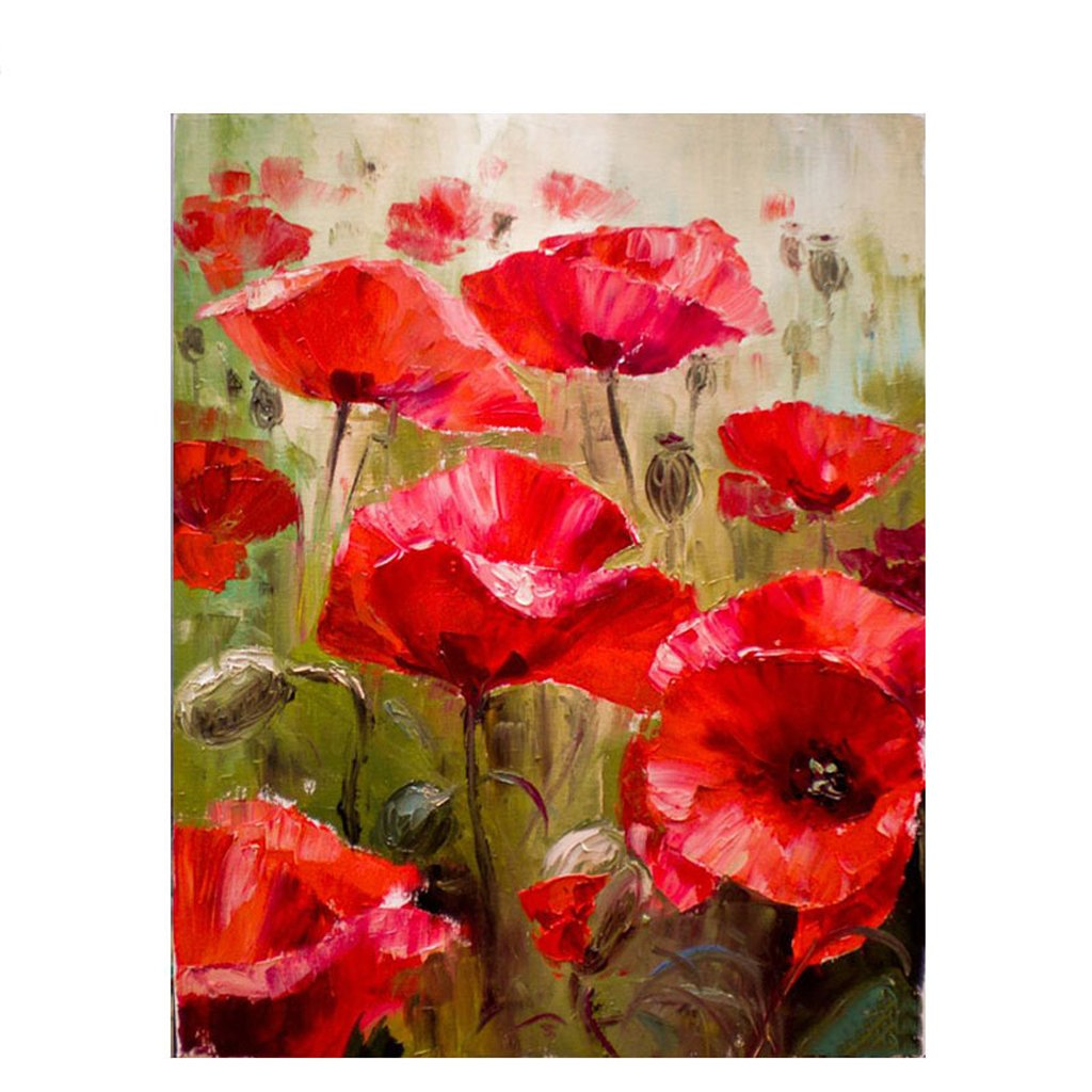 CUIGU Frameless Series Diy Oil Painting, Paint by Number Kit - Red Flower - 16