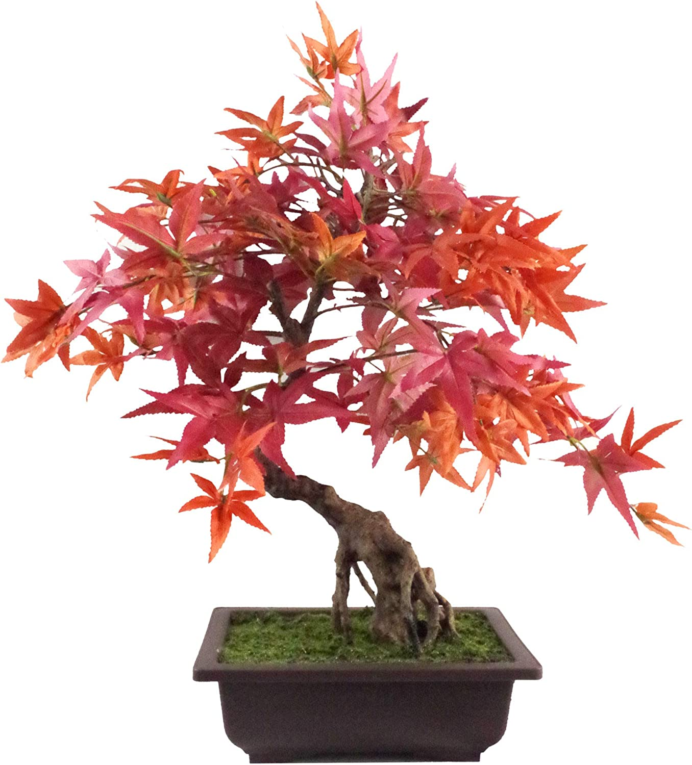 Amazon Com Leaf 50cm Artificial Red Maple Bonsai Tree 60cm Home Kitchen