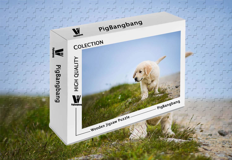 柔らかな質感の PigBangbang,Basswood -ゴールデンレトリバー 犬 子犬 グラス - - 1500ピース ジグソーパズル 1500ピース (34.4 B07HYF22FX X 22.6インチ) B07HYF22FX, 松岡町:98babcbd --- sinefi.org.br