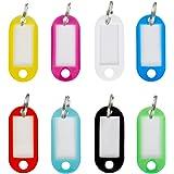 WINTEX 100 Schlüsselanhänger, robust und witterungsbeständig, bunt gemischt mit auswechselbarem Etikett | 2 Jahre Zufriedenheitsgarantie | Schlüsselschilder