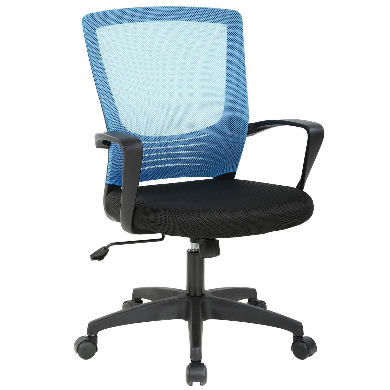 Groovy Amazon Com Office Chair Ergonomic Cheap Desk Chair Swivel Ncnpc Chair Design For Home Ncnpcorg