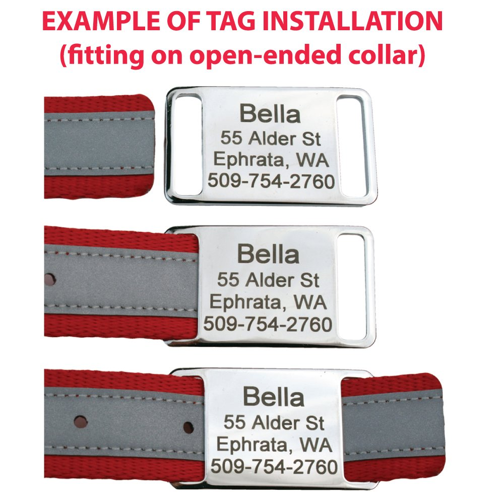 GoTags Pet ID Slide-On Personalized Dog & Cat Tags. Silent, No Noise Collar Tags made of Stainless Steel. Custom Engraved. Includes up to 4 Lines of Personalized Text. by GoTags Pet ID (Image #2)