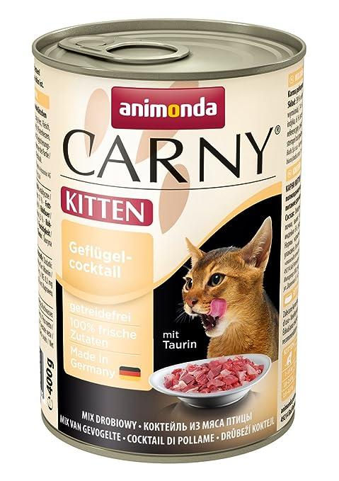 Comida humeda gatos