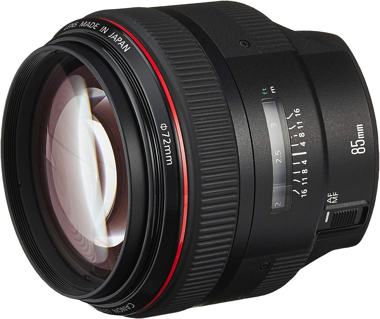 Canon85mm1 2 модели работы с осужденными