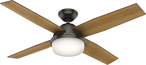 Hunter Dempsey Indoor Ceiling Fan