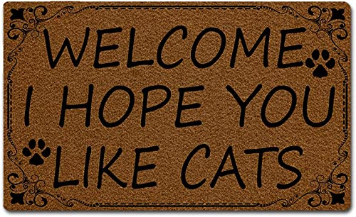 Eprocase Doormat Rubber Backing Non-Slip Door Mat Outdoor Indoor Entrance Door Mat Home Decor Mat Floor Mats Gate Pad, 30 x 18 Inches, Cead Mile Failte