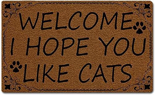 Eprocase Doormat Rubber Backing Door Mat Outdoor Indoor Non-Slip Entrance Door Mat Home Decor Mat Floor Mats Gate Pad, 30 x 18 Inches, Welcome I Hope You Like Cats