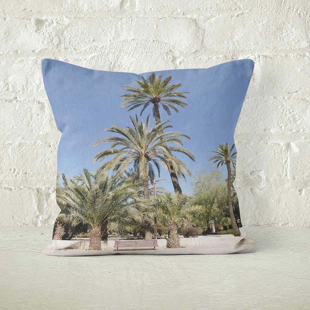 Amazon.com: Bench Palm Trees Jaime 1 Park in Elche Spain ...