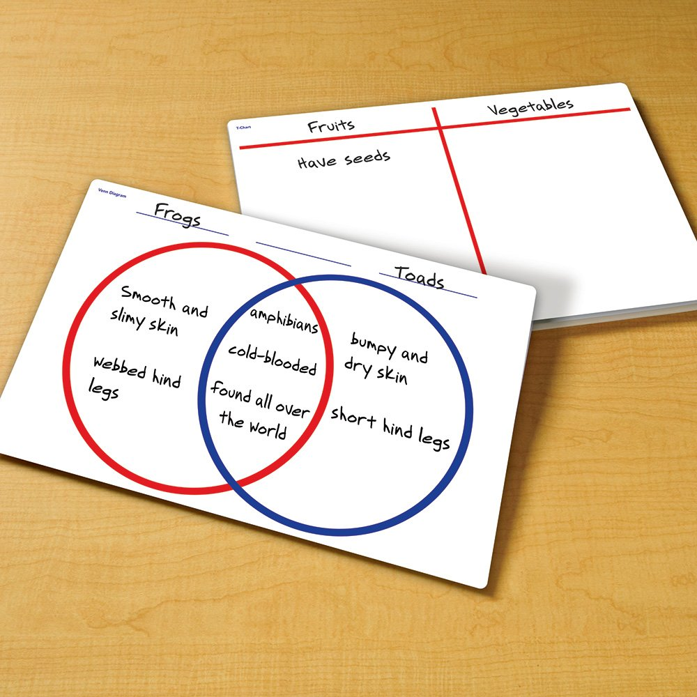 write on wipe off venn diagram classroom charts