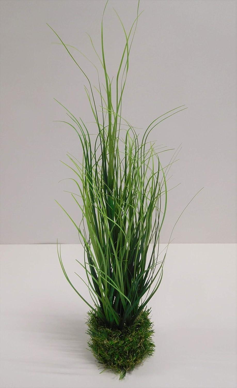 Modell 1 Ziegler Grasbusch k/ünstliches Gras Kunstpflanze Dekopflanze 53 cm getopft 56286-33 F68