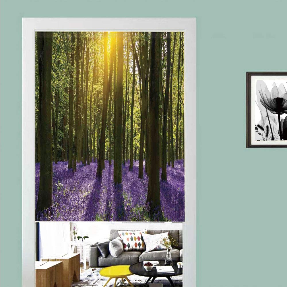 SCOCICI 3D Printed Magic Stickers Door Curtain,Woodland Decor,Sun Illuminates a Carpet of Bluebells Blooms Deep in Woodland in Oxfordshire,Privacy Protect for Kitchen,Bathroom,Bedroom(1 Panel)