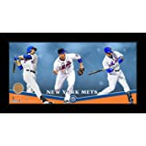 Steiner Sports MLB New York Mets Players