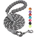 BAAPET 5 FT Strong Dog Leash with Comfortable Padded Handle and Highly Reflective Threads Dog Leashes for Small and Medium Do