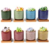 Lawei 8 Pack Ceramic Ice Crack Succulent Plant Pot with Bamboo Tray - Cactus Plant Pot Flower Pot Container Planter for…