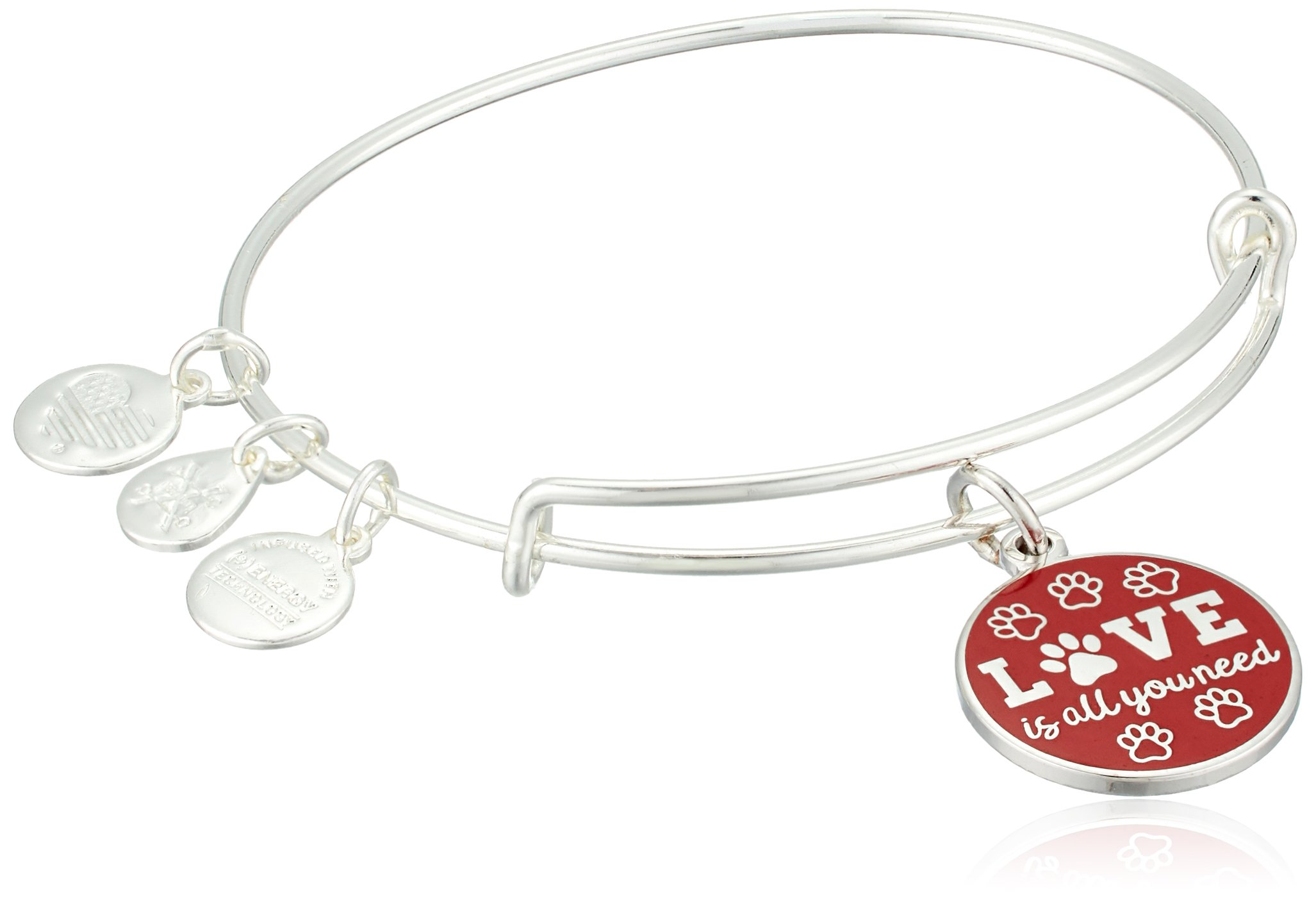 Alex and Ani Words are Powerful, Love is All You Need EWB Bangle Bracelet by Alex and Ani