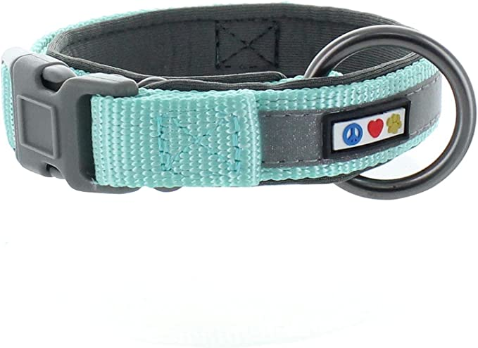 Jersey Light Blue chiens Bandes
