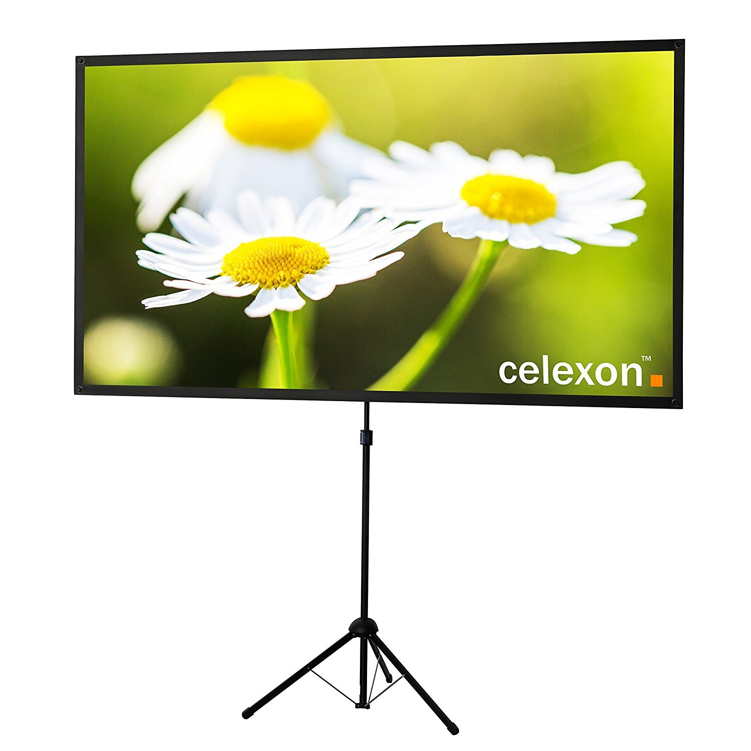 celexon 90'' Tripod Projector Screen Ultra Lightweight | 16:9 format | Ultra Portable | 11 lbs weight | Mobile presentation and cinema solution | Projector Screen Size: 78'' x 44'' by Celexon