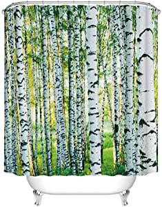 Fangkun Woodland Decor Shower Curtain Set - Birch Trees Nature Themed Decorating Picture - Polyester Fabric Bath Curtains - 12pcs Shower Hooks - White Green - 72 x 72 inches