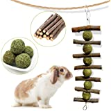Bunny Chew Toys for Teeth, Natural Organic Apple Sticks for Rabbits, Chinchillas, Guinea Pigs, Hamsters Chewing Playing…