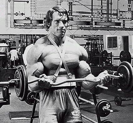 Amazon com: Arnold Schwarzenegger Bodybuilder Olympia