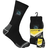NRL Men's Panthers Work Socks
