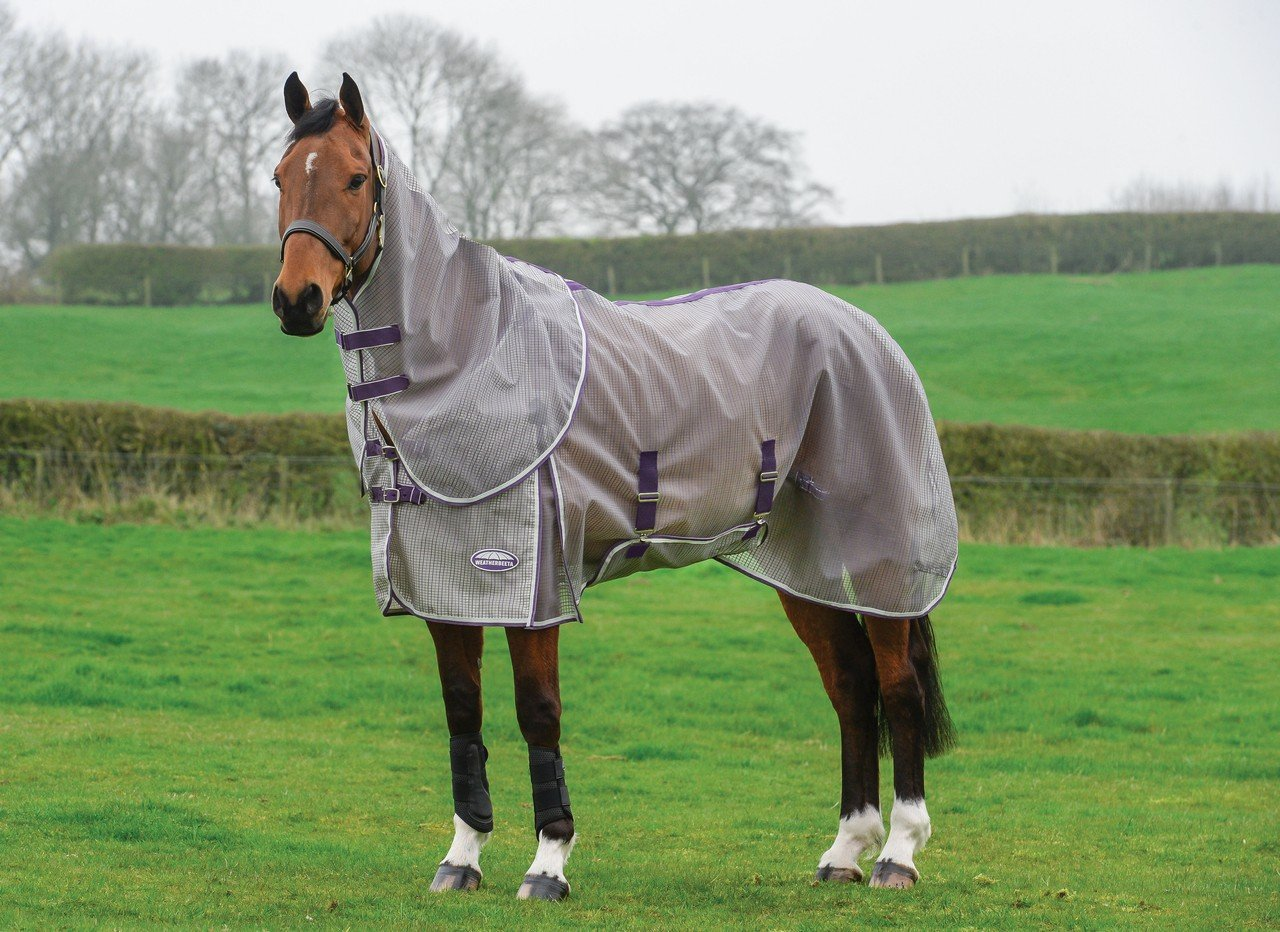 Weatherbeeta Comfitec Ripshield Plus With Belly Wrap Detach A Neck Grey/Purple 78''
