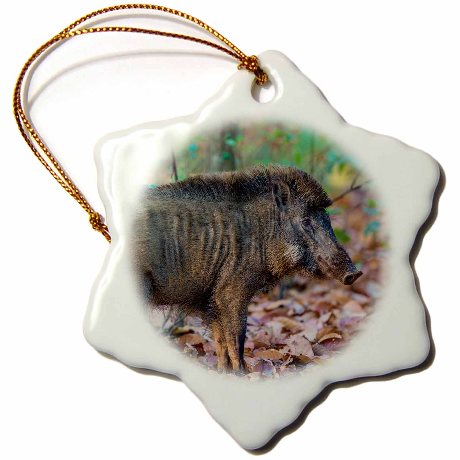 3dRose Danita Delimont - Pigs - India. Indian boar at Kanha Tiger reserve. - 3 inch Snowflake Porcelain Ornament (orn_276778_1)