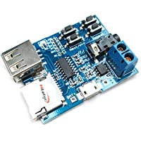 HiLetgo Mp3 Lossless Decoders Decoding Power Amplifier Mp3 Player Audio Module Mp3 Decoder Board support TF Card USB