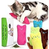 Giocattolo della peluche di Catnip, pulizia dei denti del gatto, cuscino creativo Scratch Pet Catnip Teeth Grinding Chew Toys (5pcs / set)