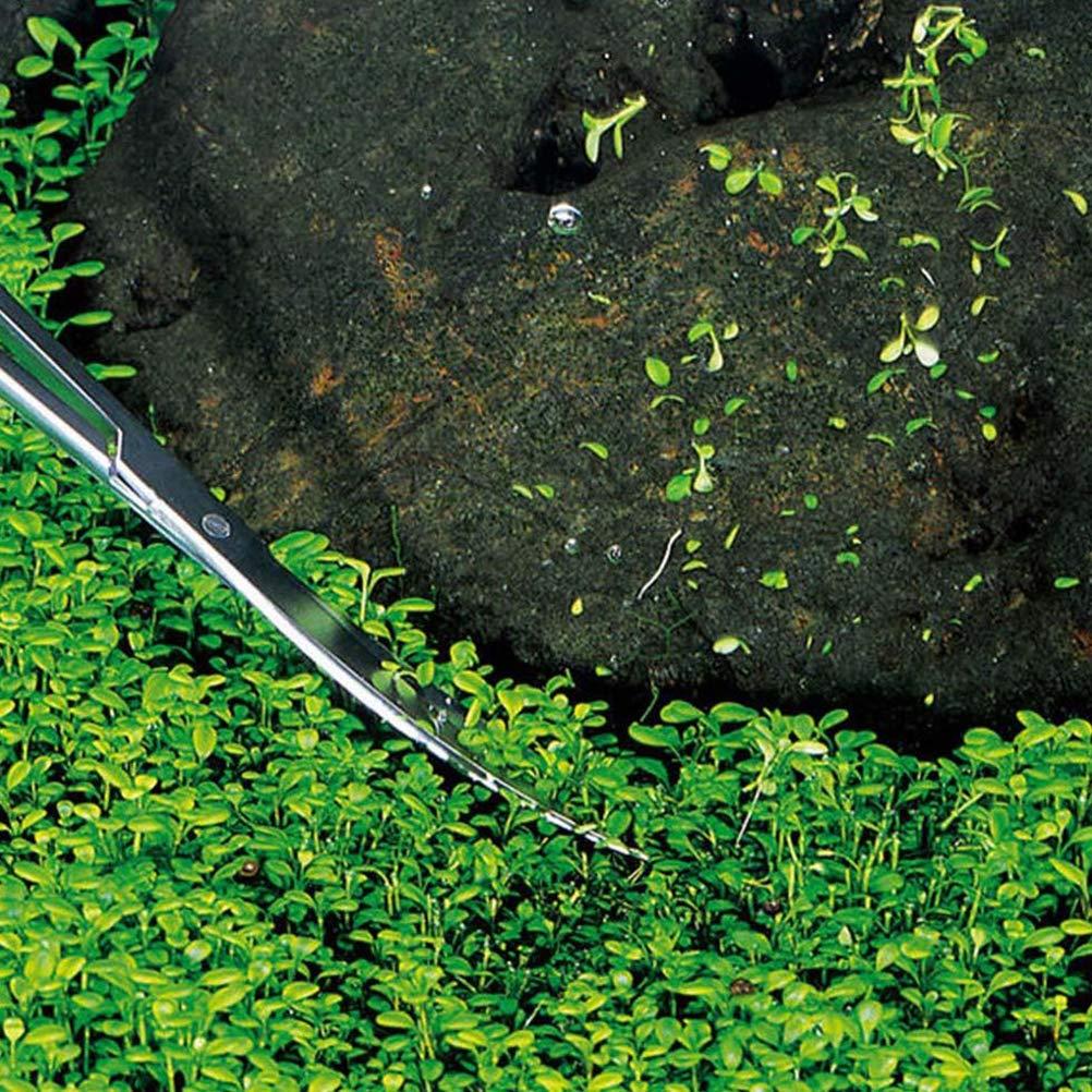 Ailyoo Alicates para Plantas acu/áticas Acero Inoxidable Tanque para Peces de Acuario para la Limpieza de podas. Juego Completo de terrarios para Acuario Tijeras para Plantas acu/áticas