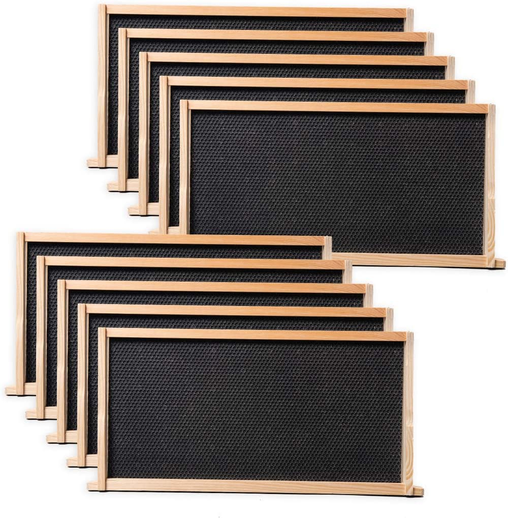 Unassembled SHALLOW Frames GROOVE Bottom Bars NO FOUNDATION 10 Pack