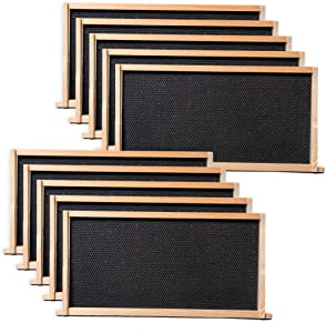 BeeCastle 10-Pack Waxed Foundation with Complete Unassembled Commercial Frames, 9-1/8-Inch